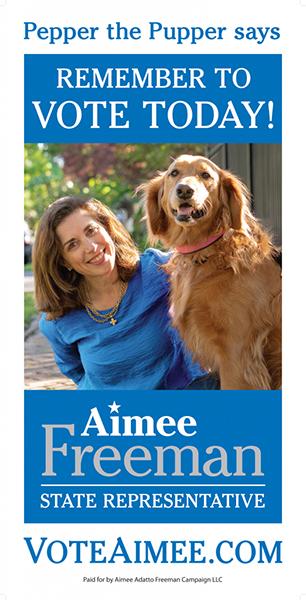 Aimee Freeman campaign yard sign